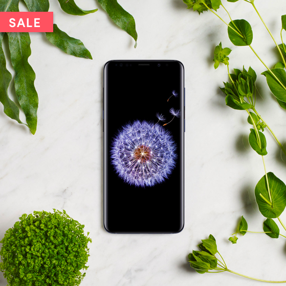 Samsung Galaxy S9 Plus at Wing